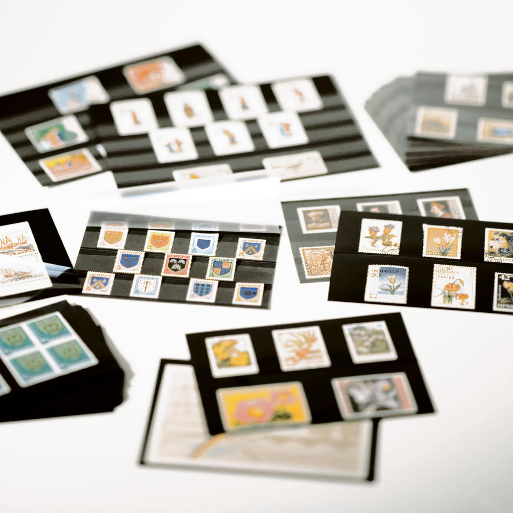 Планшет для марок на 2 полоски Standard 148x85 мм